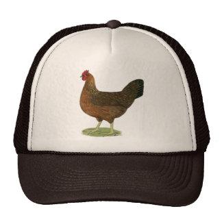 Welsummer Hen Mesh Hats