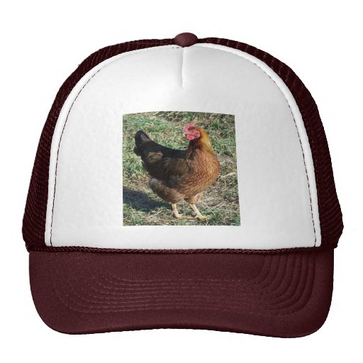 Welsummer Hen Out in the Sunshine Trucker Hat