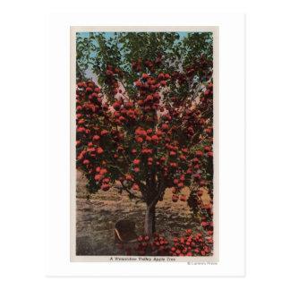 Wenatchee, manzano del valle de WAA Wenatchee Postal