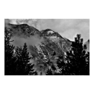 Wenatchee National Forest Black and White 2 Posters