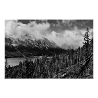 Wenatchee National Forest Black and White Poster