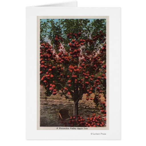 Wenatchee, WAA Wenatchee Valley Apple Tree Greeting Cards