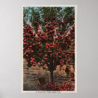 Wenatchee WAA Wenatchee Valley Apple Tree Posters