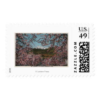 Wenatchee, WAView of Mt. Cashmere with Trees Postage