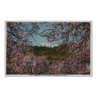 Wenatchee WAView of Mt Cashmere with Trees Poster