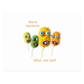 We're Bacteria Postcard