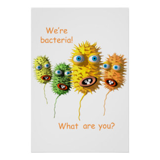 We're Bacteria Poster