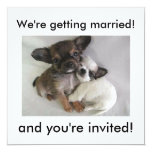 We're getting married!, and you're invited! 13 cm x 13 cm square invitation card