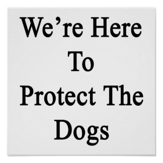 We're Here To Protect The Dogs Poster