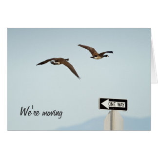 We're Moving Card with Canada Geese