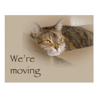 We're Moving Nofitication - Lily Postcard