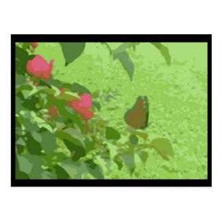 Wesley Chapel Butterfly Postcard