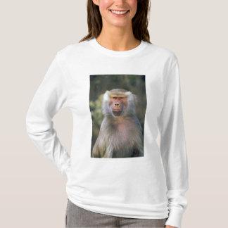 West Africa. Hamadryas baboon, or papio T-Shirt