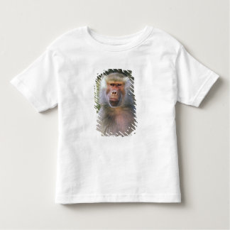 West Africa. Hamadryas baboon, or papio Toddler T-shirt