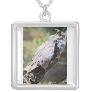 West African Gaboon Viper Necklace