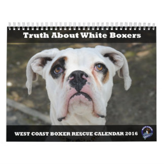 West Coast Boxer Rescue 2016 White Boxer Calendar