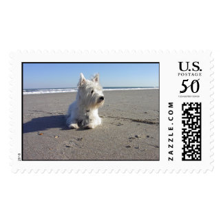 West Highland Terrier at The Beach Postage