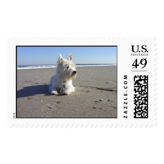 West Highland Terrier at The Beach Postage Stamps
