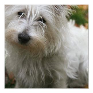 "West Highland Terrier Dog Invitation 5.25"" Square Invitation Card"