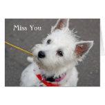 west highland terrier dog miss you card