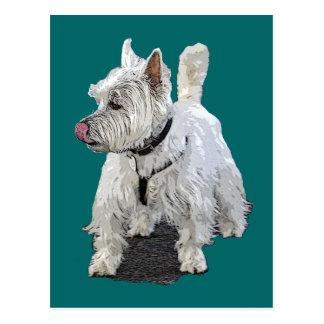 West Highland Terrier Postcards