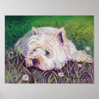 West Highland Terrier Print Poster