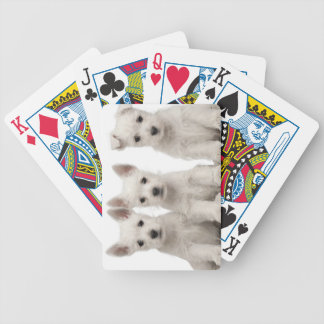 West Highland Terrier puppies (7 weeks old) Bicycle Playing Cards
