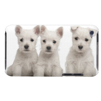 West Highland Terrier puppies (7 weeks old) Barely There iPod Case