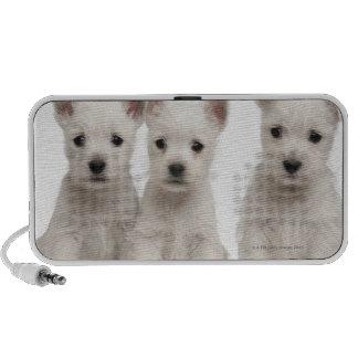 West Highland Terrier puppies (7 weeks old) Travel Speakers