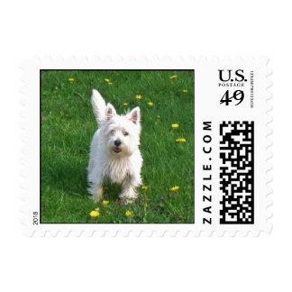 West Highland Terrier Stamps