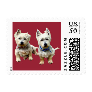 West Highland Terriers Postage Stamp.