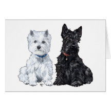 West Highland White & Scottish Terriers Cards