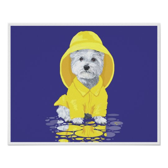 West Highland White Terrier April Showers Poster