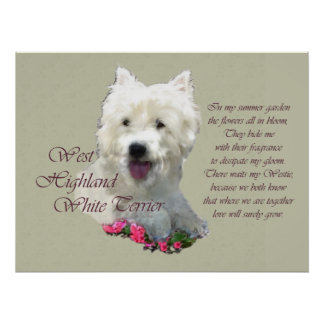 West Highland White Terrier Art Prints