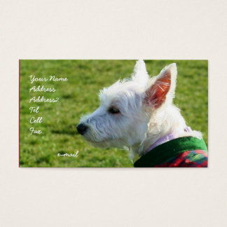 West Highland White Terrier business cards