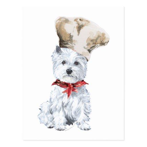 West Highland White Terrier Chef Postcard