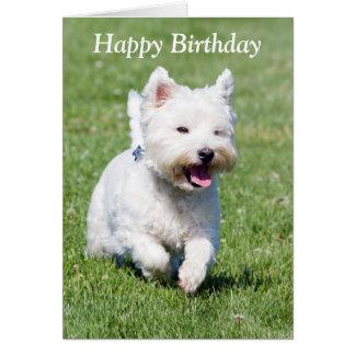 West Highland White Terrier dog birthday card