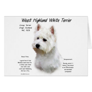 West Highland White Terrier History Design Card