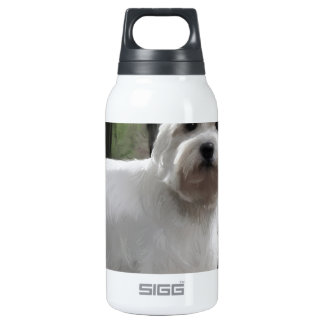 West Highland White Terrier Insulated Water Bottle