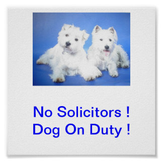 West Highland White Terrier No Solicitors Sign Wes Poster
