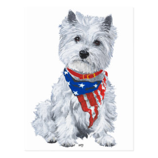 West Highland White Terrier Patriotic Postcard