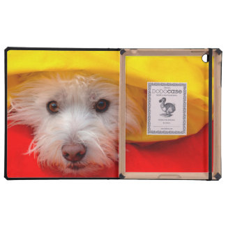 West Highland White Terrier peeking out of yellow Covers For iPad