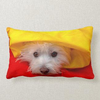 West Highland White Terrier peeking out of yellow Lumbar Pillow