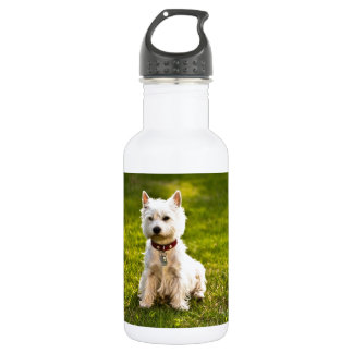 West Highland White Terrier 18oz Water Bottle