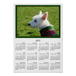 West Highland White Terrier Posters