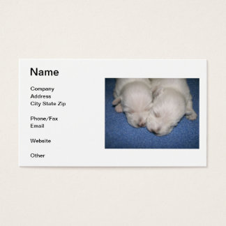 West Highland White Terrier Puppies Business Card