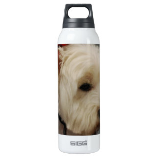 West Highland White Terrier SIGG Thermo 0.5L Insulated Bottle