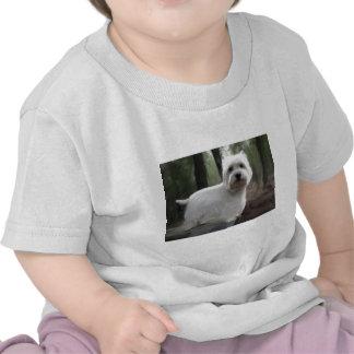 West Highland White Terrier Shirts