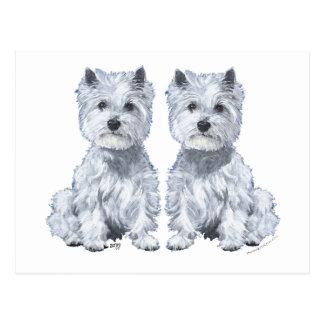 West Highland White Terrier Twins! Postcard