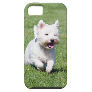 West Highland White Terrier, westie dog cute photo iPhone 5 Cover